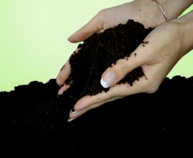 VERMI - Создаём удобрение своими руками и рассматриваем промышленные