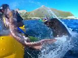 The group of content creators were out testing a new GoPro model off the coast of the South Island when Kyle Mulinder (pictured) was caught up in a battle between a seal and octopus