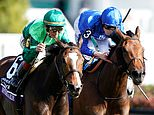 ohn Velazquez, aboard Sistercharlie, races to victory over Wild Illusion on Saturday
