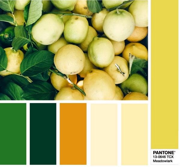 image 1786 - Модні кольори одягу весна-літо 2018: фото, який колір модний, модні тенденції кольору