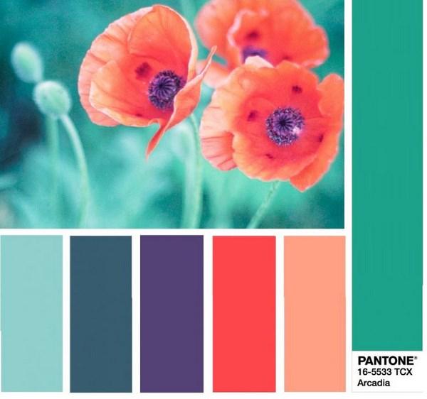 image 1782 - Модні кольори одягу весна-літо 2018: фото, який колір модний, модні тенденції кольору