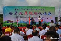 """来洋县,带你看获得世界纪录认证的""""网红""""稻田!"""