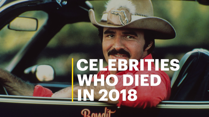 Stars Who Died in 2018, From