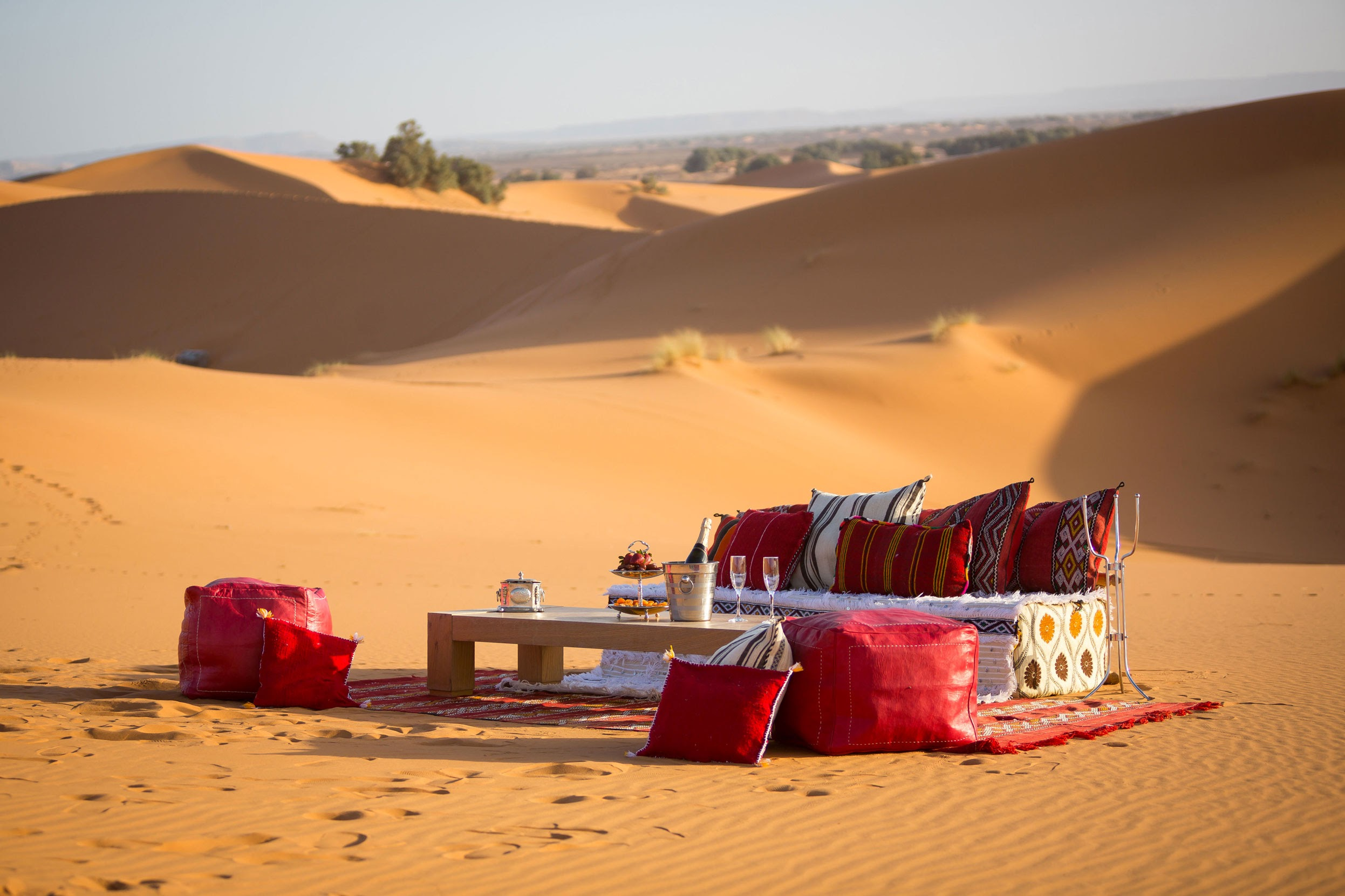 Champagne in the dunes