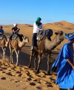 Mountains, berber villages and desert