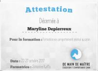 3. formation en comportement animal et canin