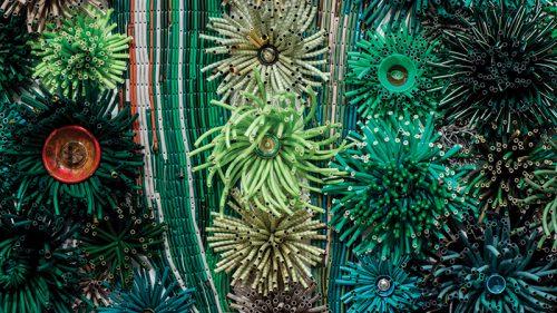 New Bloom by Michelle Stitzlein at Desert Botanical Garden