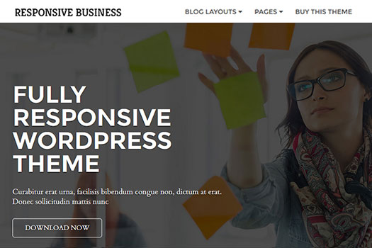 Responsive Child Theme Business