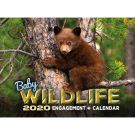 Baby Wildlife 2020 Wall Calendar