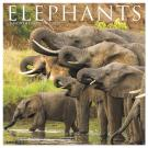 Elephants 2020 Wall Calendar
