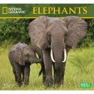 Elephants NG 2019 Wall Calendar