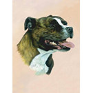 Staffordshire Bull Terrier Playing Cards