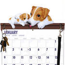 Jack Russell Terrier Calendar Caddy & Leash Hook