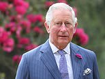 The Prince of Wales said big businesses have `no excuse´ not to take immediate action (Chris Jackson/PA)