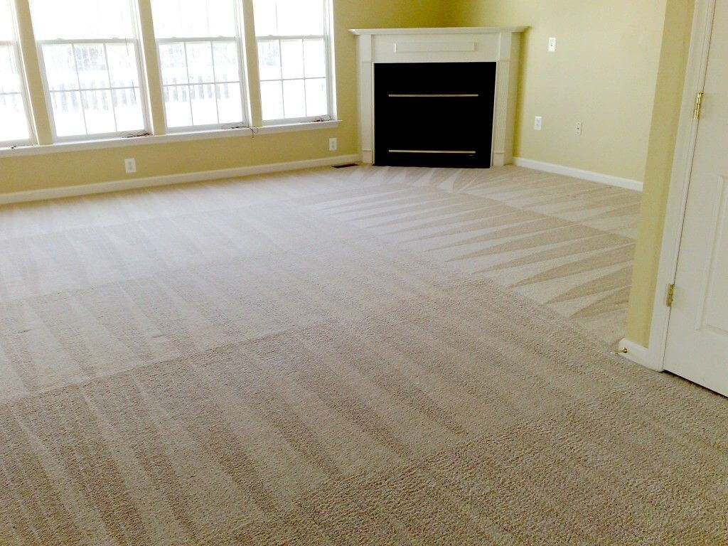 professional tallahassee cleaned carpets.jpg