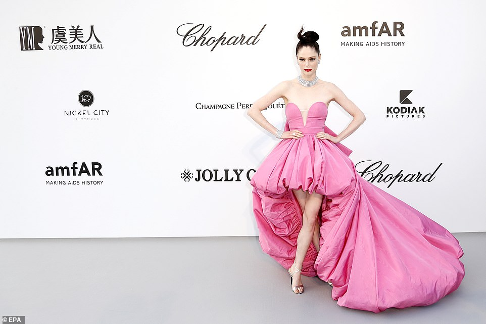 Amazing: Coco Rocha certainly made an entrance in a head-turning pink ball-gown which fell short at the front but had a poofy train
