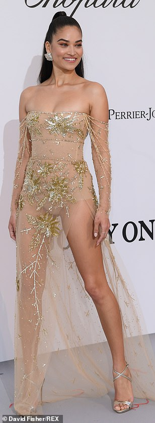 Wow: Shanina Shaik set pulses racing in a semi-sheer nude gown with gold detailing to over her modesty