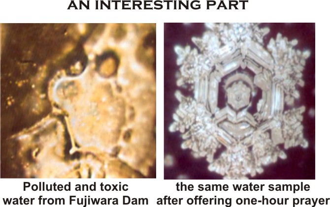 emoto+polluted+water