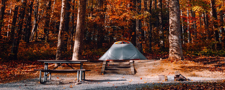 Tent on a campsite in the fall. Inexpensive camping spots make it easy to save your items.