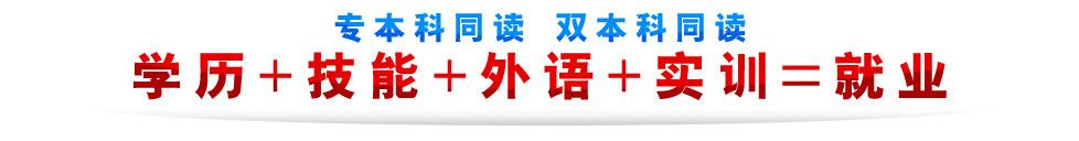 上海新江学院