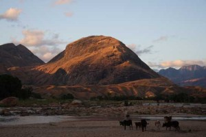 Dawn-peak