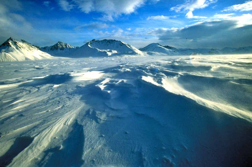 ISLANDA ALASKA BASSA014
