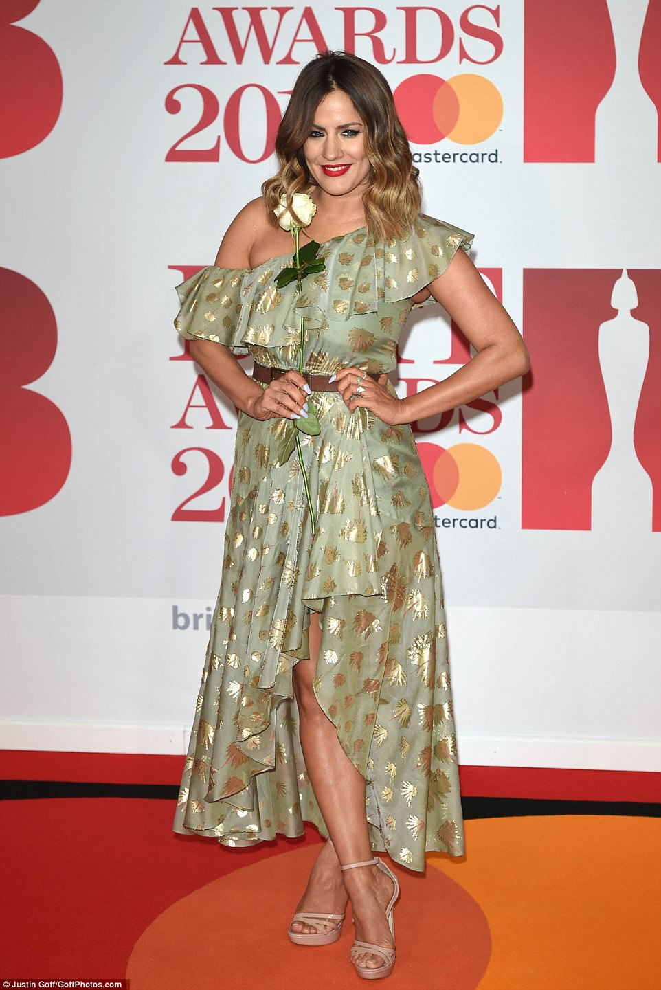 Entrance: Caroline Flack also made a stylish arrival on the red carpet, cladding her lithe figure in a light green dress which boasted a striking gold overlay