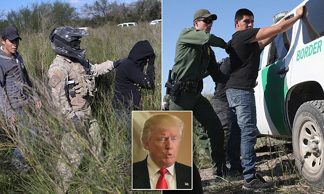 Illegals say they've given up trying to cross since Donald Trump won the election