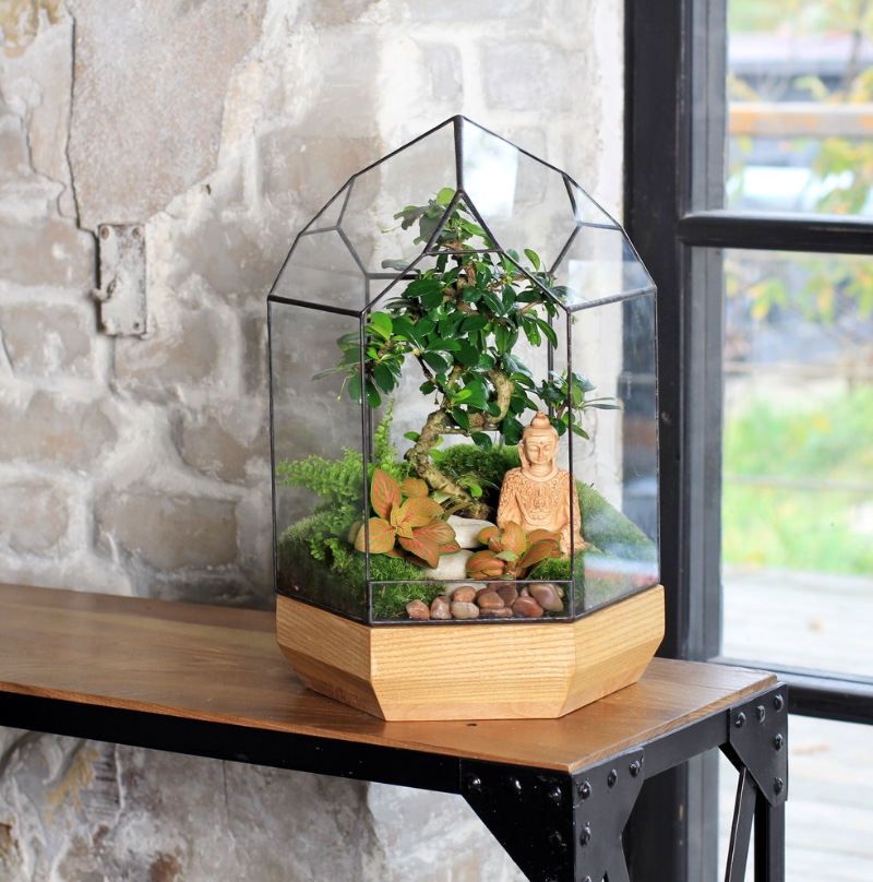 florarium5 - Стильное украшение вашего дома — флорариумы своими руками