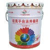 Outer Wall Silicon Ion Coating