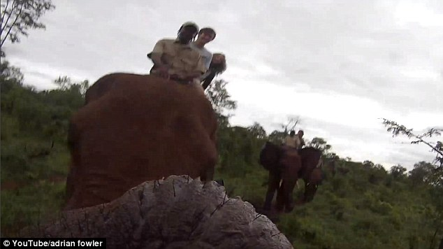 Adrian Fowler (middle) was riding the elephant with a safari guide and a female travel companion