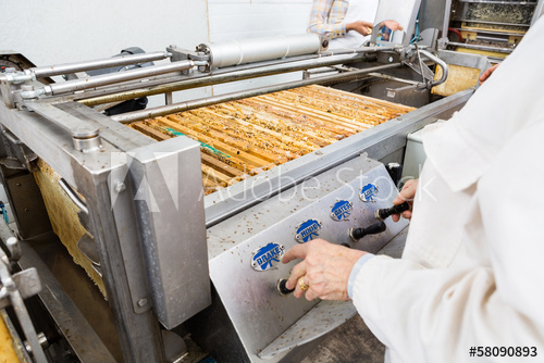 Female Beekeeper Operating Honey Extraction Plant