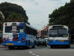 Sydney Buses 3230 (MO.3230) and 2184 (MO.2184) at Manly Ferry Teminal, 20/12/01