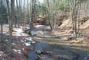 Creek in Emery Park