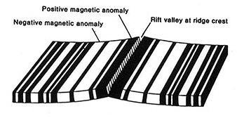 Magnetic stripes parallel to mid-ocean ridges; black indicates the magnetic field emanates outward from the south pole (normal N-S) and white from the north (reverse N-S) but at different times.