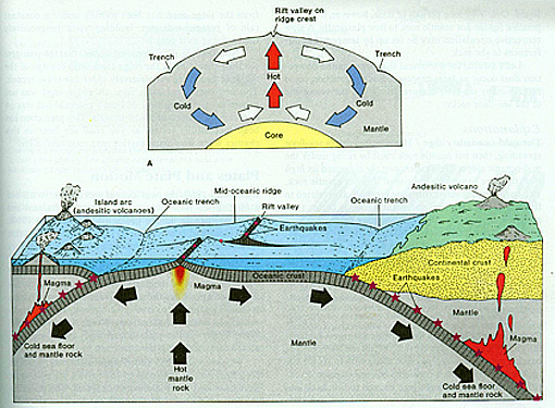 Another rendition of the Plate Tectonics Model, showing the participation of convection currents.