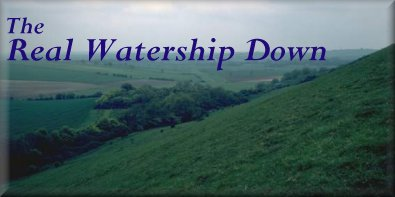 Title: Watership Down - The Real Watership Down