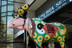 Moose on the loose in Chinatown