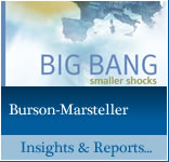 Burson-Marsteller Insights & Reports