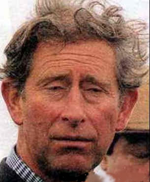 PRINCE CHARLES - BAD HAIR DAY