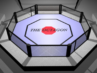 Handle business disagreements in the octagon