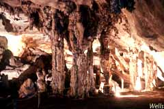 Guided Tours of Blanche Cave are available