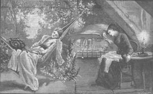 An illustration for SUN AND SHADE