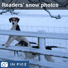 Readers' snow pictures