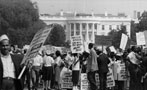 Watered-Down Legislation Has Changed America Before. It Can Happen Again.
