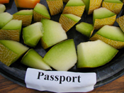 Passport Melon sliced