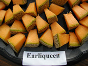 Earliqueen Melon sliced