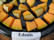 Edonis Melon sliced