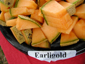 Earligold Melon sliced