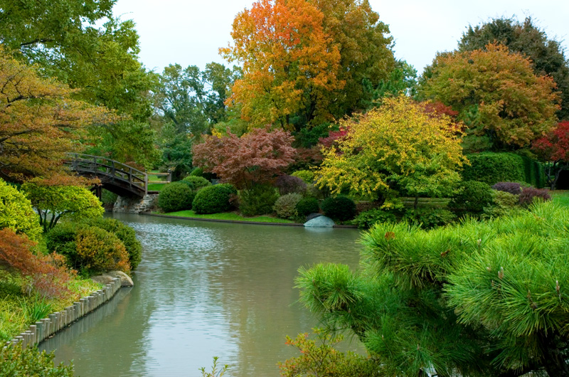 Botanical Gardens Japanese Lake with colorful fall foliage